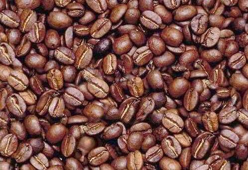 grain-de-cafe
