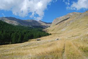 Saint-Dalmas-le-Selvage-les-Clos-de-Bousieyas