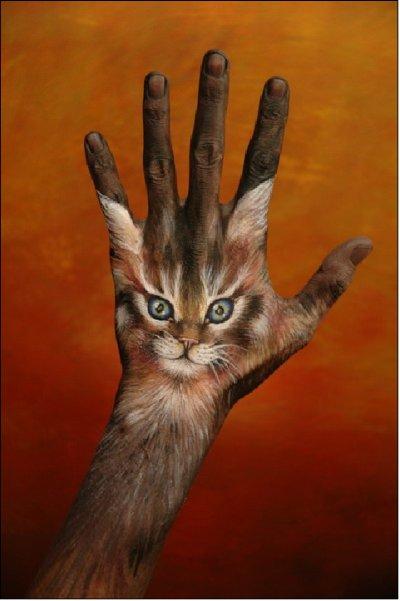 Le Chat dans la main Art visuel Blague du Jour